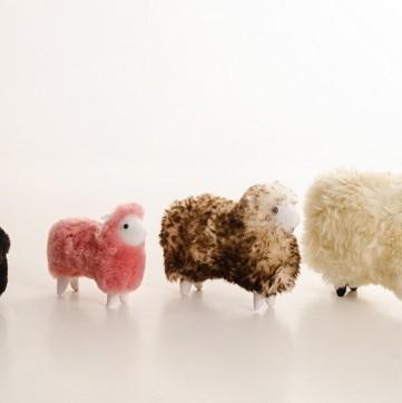 Ovelhas Decorativas